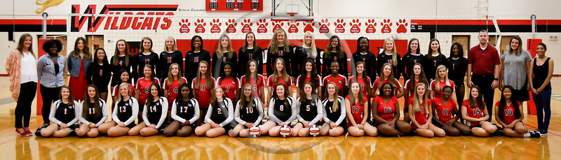 2016 LHHS Volleyball