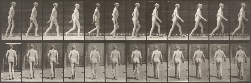 Nude man walking (Animal Locomotion, 1887, plate 562)
