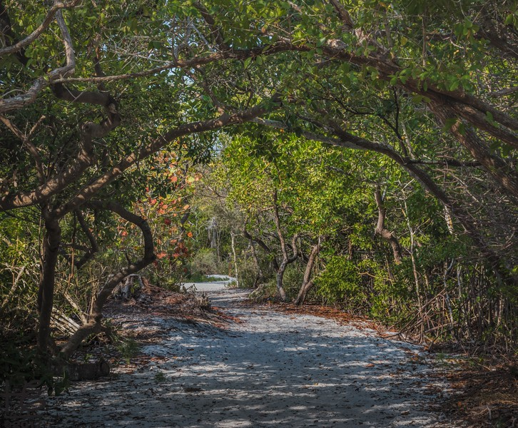 Longboat Key Park trail