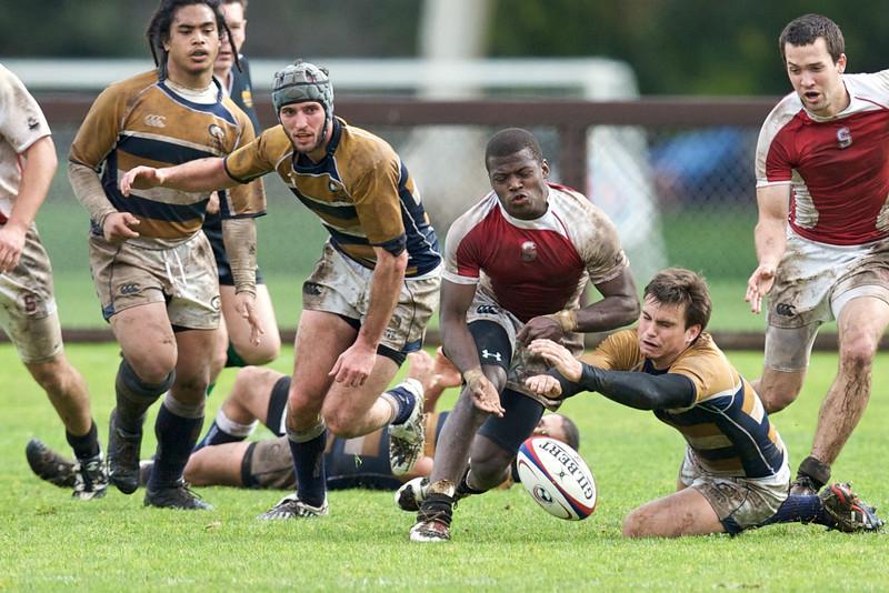 rugby-stanford-davis  9935.jpg