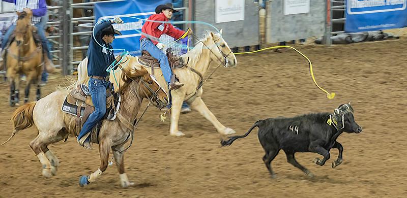 Scottsdale Parada del Sol Rodeo   March 08, 2020  22_.jpg