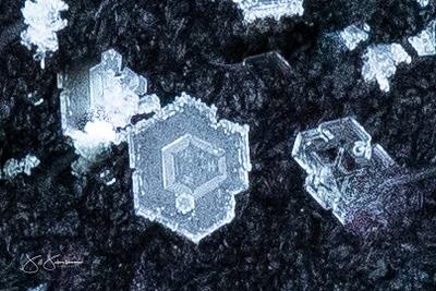 snowflakes-1585.jpg