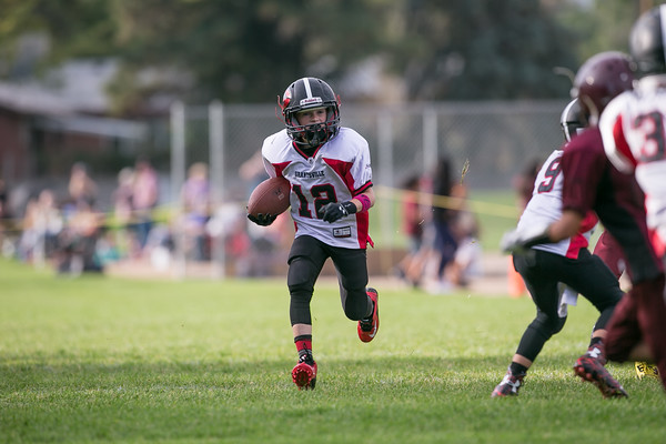2015 Youth Football