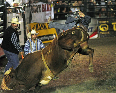 Hollister PBR Bull Riding