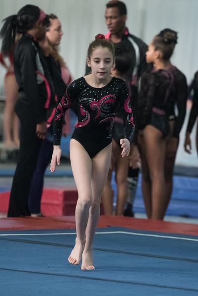 NYC Gymnastic Meet