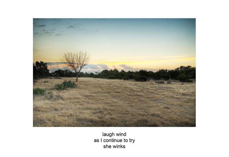 2007-11-17 Mesquite at sunset ozona poem.jpg