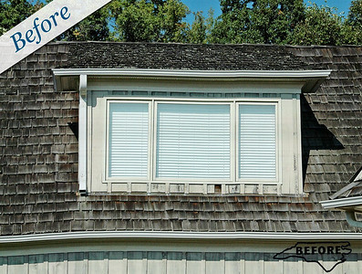 Clad Windows & Sash Replacement Procedures