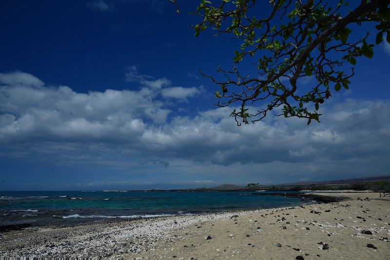 2017-Hawaii_079.jpg