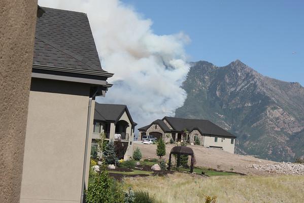 Quail Alpine Fire