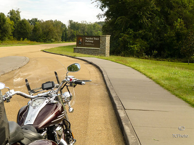 Along the Natchez Trace