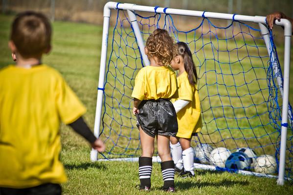 Yellow Bumblebees Game 5 PLUS Team Photos