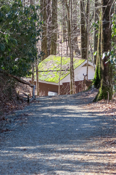 Raven Cliff Falls Trail -- 2,950'