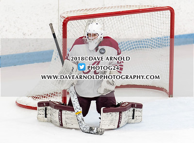 2/26/2018 - Boys Varsity Hockey - Pope Francis vs Arlington