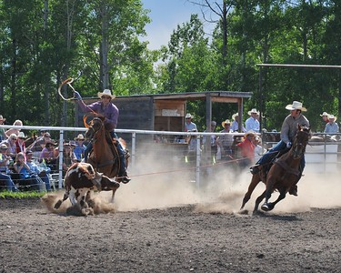 Team Roping (Section 3)