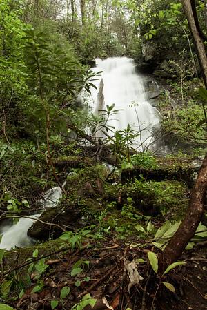 Dockery Lake Trail to Martha Falls