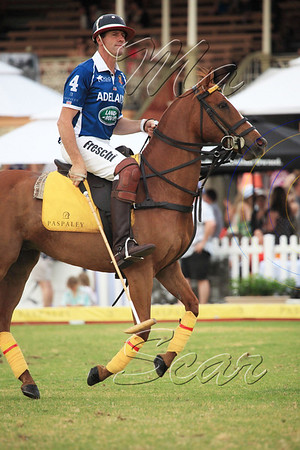 2012. POLO IN THE CITY Adelaide