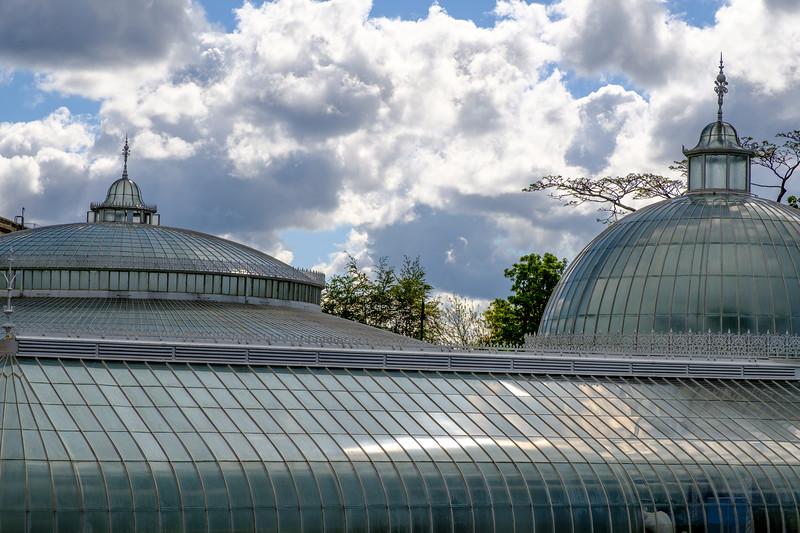 20190511 Glasgow Botanic Garden  046.jpg