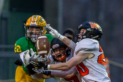Lynden Lions defeat the Washougal Panthers 29-26