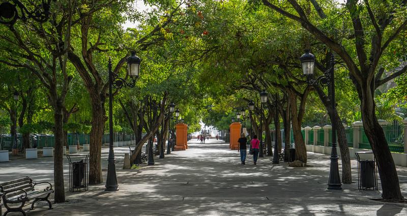2014-08 San Juan20140818-_DSC0712-2.jpg