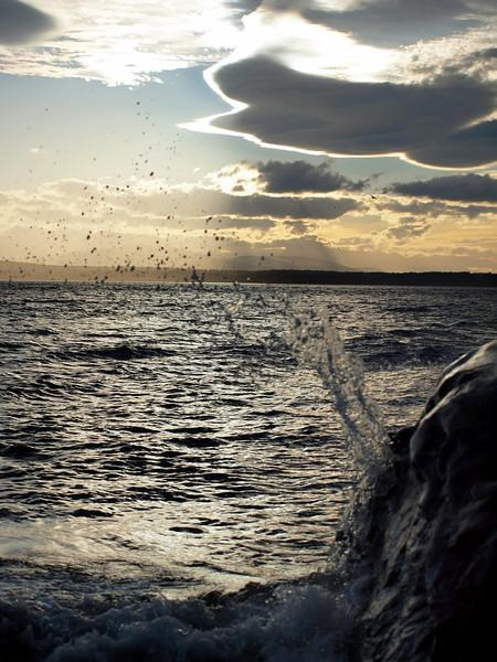 Whidbey Island Beach