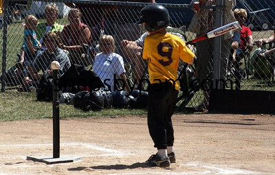 T Ball and Pee Wee Tourney at Clinton Day Two