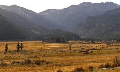 Mill Creek Trail, RMNP, October 18, 2008