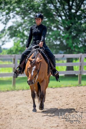 54 Western Pleasure Horses Sr