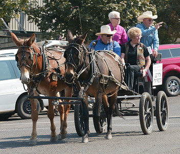 2011 Hells Canyon Mule Days