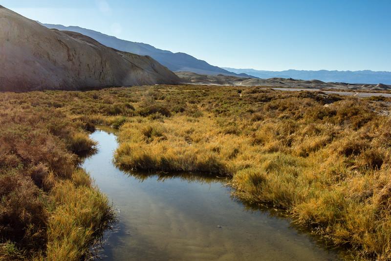 Salt Creek