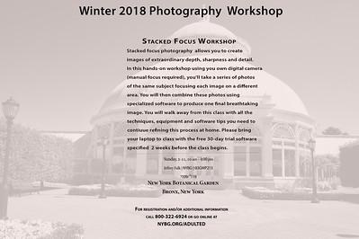 New York Botanical Garden Winter 2018 Workshop