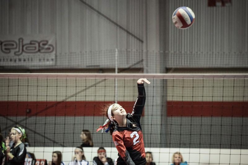 2015-03-07 Helena Texas Image Volleyball 002.jpg