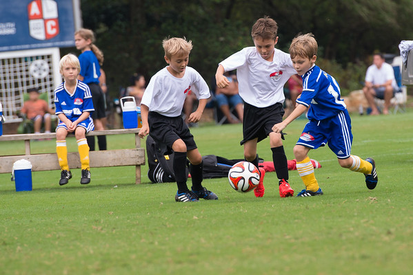 2014 Renegades Soccer