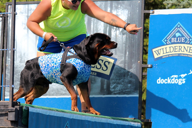 Dock Dogs at Fair-143.JPG