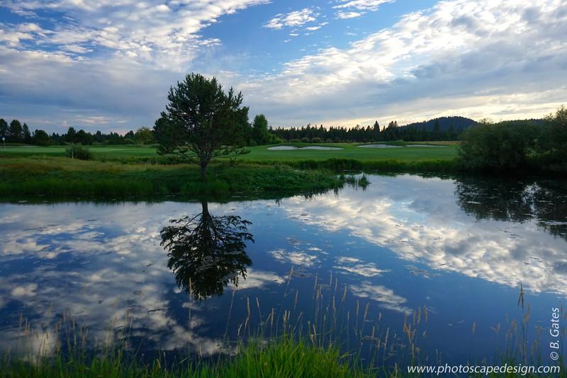 Oregon: 2014