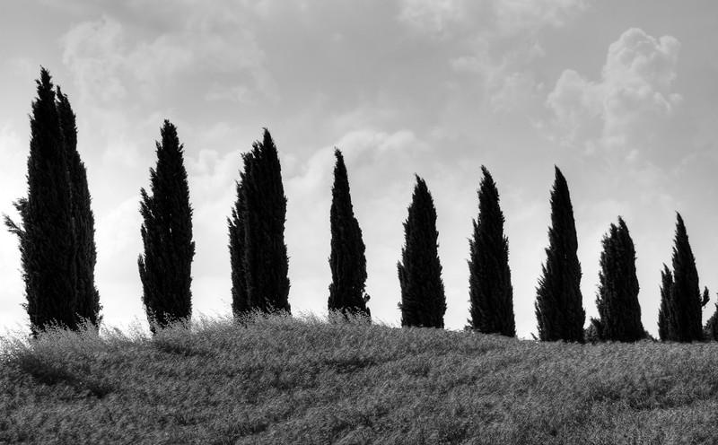 _CAN6513_Italya_tonemapped_20090626_4320 x 2868-6.jpg