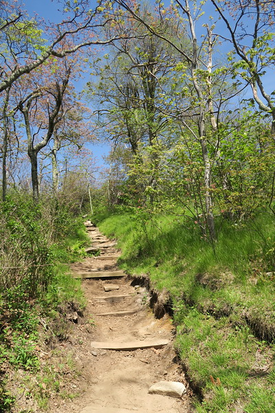 Mount Pisgah Trail -- 5,200'