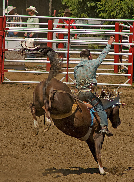 COOMBS RODEO-2009-3548A.jpg