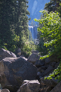 Yosemite039