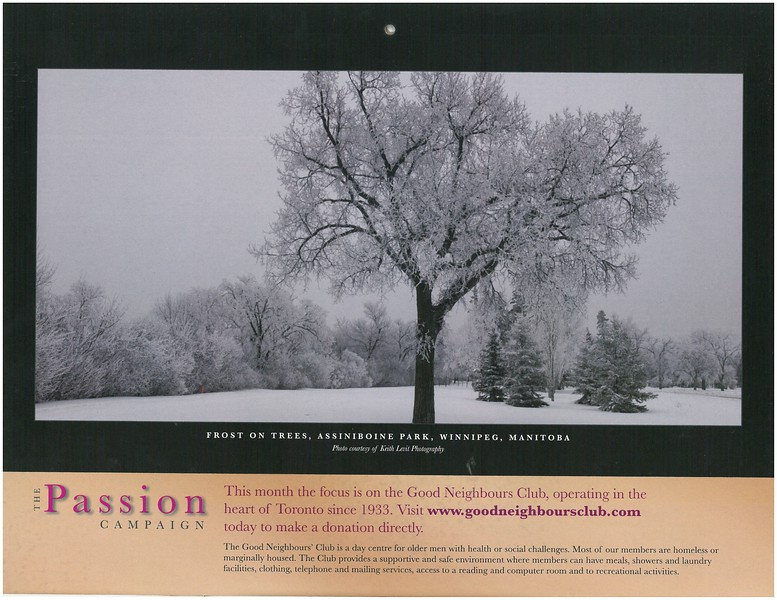 2009 Passion Campaign Calendar Feb. 2009 Frost on Trees, Assiniboine Park, Wpg. Man. page.jpg
