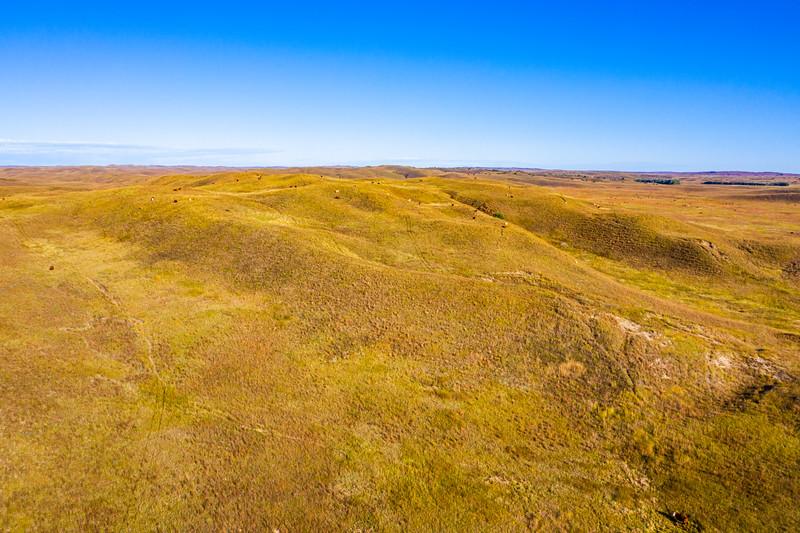 Horn Ranch-2-18.jpg