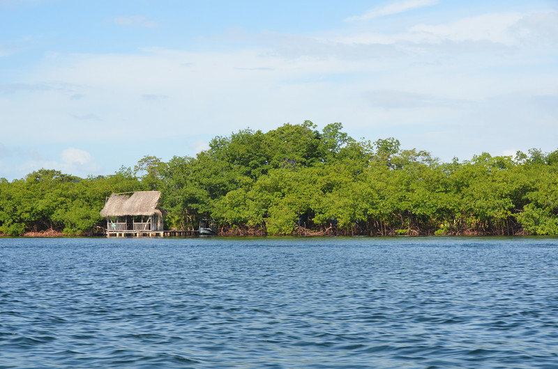 Bocas del Toro Boat Tour 11.jpg
