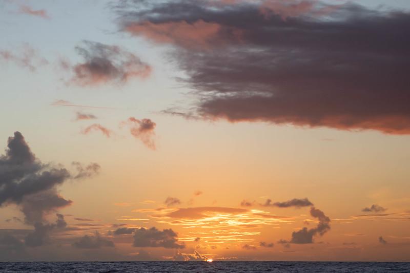 kvb fam holo sunset-118.jpg