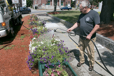 Watering flowers on the Upper Common in Fitchburg, August 16, 2019