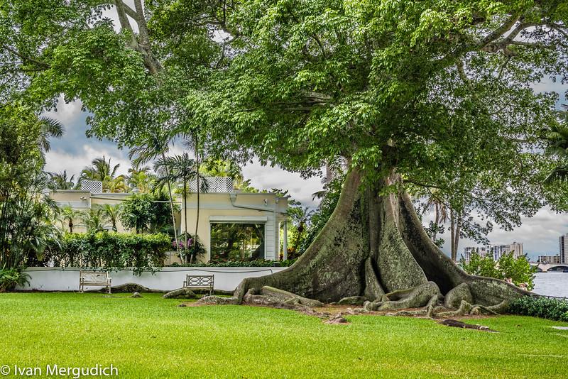 Palm Beach-15.jpg