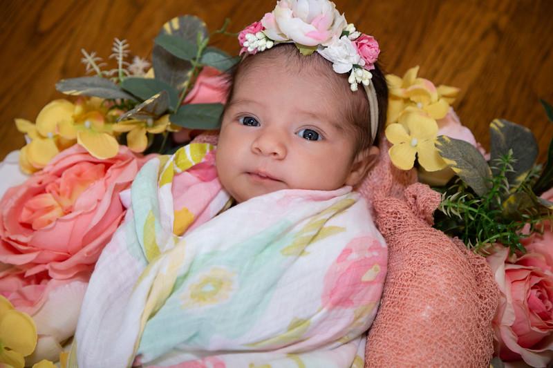 Eva New Born Photos