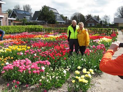 Holland in Springtime Bike & Barge