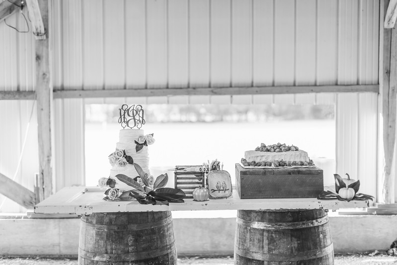 427_Aaron+Haden_WeddingBW.jpg