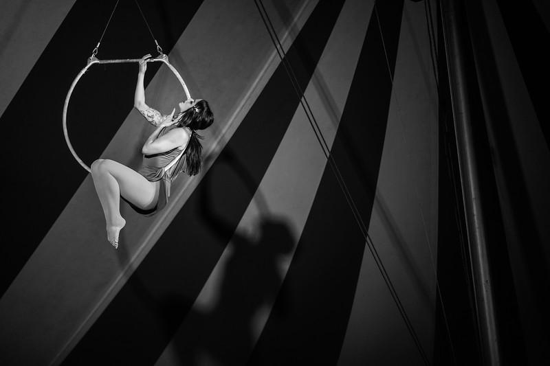 2018 Venardos Circus