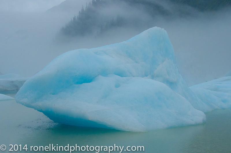 Glaciers-0118.jpg
