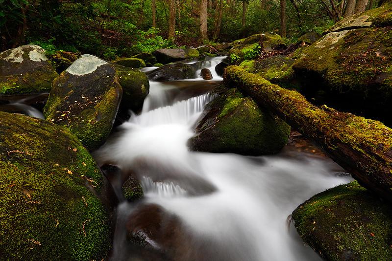 Log Jam - Roaring Fork Motor Trail (Great Smoky Mountains National Park)